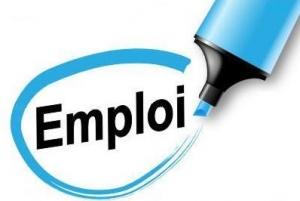 Aide à la préparation de candidatures Saint Etienne