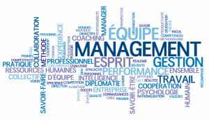 Fiche management
